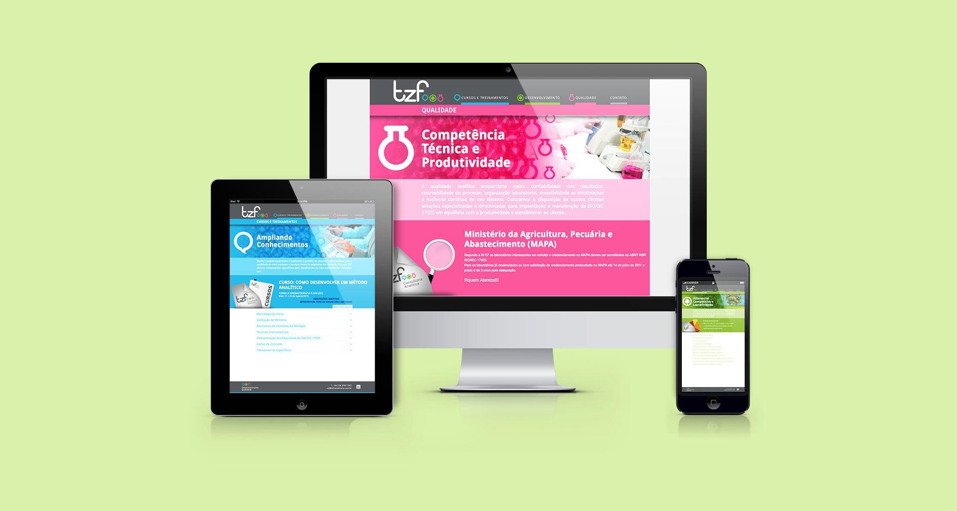 web TZF Consultoria